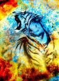 Il collage astratto di verniciatura della tigre su colore sottrae il fondo, la struttura della ruggine, animali della fauna selva illustrazione vettoriale