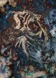 Il collage astratto di verniciatura della tigre su colore sottrae il fondo, la struttura della ruggine, animali della fauna selva royalty illustrazione gratis