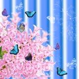 Il collage del giacinto e delle farfalle rosa di colori Immagine Stock