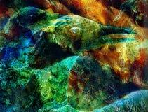 Il collage dell'uccello di Phoenix Fotografia Stock Libera da Diritti