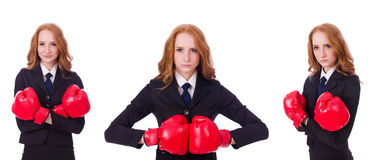 Il collage della donna di affari della donna con i guantoni da pugile su bianco Fotografia Stock