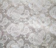 Il colore d'argento bianco del tessuto del broccato Immagini Stock