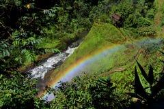 Il colore dell'arcobaleno Fotografia Stock