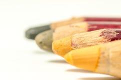 Il colore della caduta Fotografie Stock