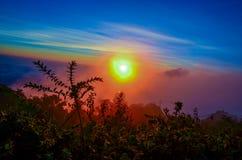 Il colore della nebbia immagine stock