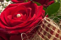 Il colore di amore Fotografia Stock Libera da Diritti