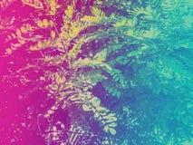 Il colore di pendenza ha tonificato il dettaglio degli alberi forestali fotografia stock