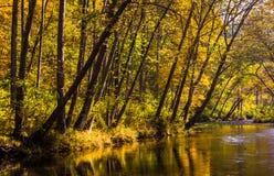 Il colore iniziale di autunno lungo il fiume della polvere nera, in polvere nera cade Immagini Stock
