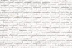 Il colore morbido del muro di mattoni immagine stock