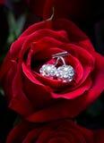 Il colore rosso è aumentato con un ornamento del gioielliere nel centro Fotografie Stock Libere da Diritti