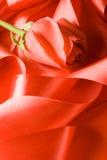 Il colore rosso è aumentato su nastro del raso Fotografia Stock
