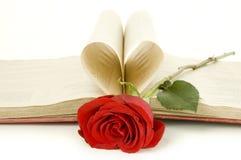 Il colore rosso è aumentato su un libro Immagine Stock