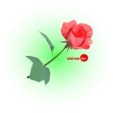 Il colore rosso è aumentato una rosa astratta fatta nello stile poligonale Fotografia Stock Libera da Diritti