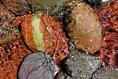 Il colore rosso del flusso inferiore dell'acqua di fiume oscilla l'acetato immagini stock libere da diritti