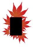 Il colore rosso lascia il blocco per grafici Fotografie Stock Libere da Diritti