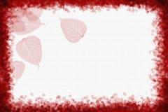 il colore rosso lascia la priorità bassa Immagini Stock Libere da Diritti