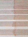 Il colore rosso oscilla le scale Immagini Stock Libere da Diritti