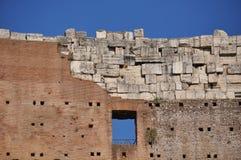 Il colosseum romano Fotografia Stock