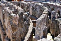 Il colosseum romano Fotografia Stock Libera da Diritti
