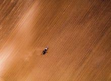 Il colpo aereo di un agricoltore che semina, seminante pota al campo Fotografia Stock