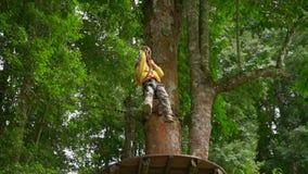 Il colpo lento di un ragazzino in un cavo di sicurezza scala su uno zipline in cime d'albero in un parco di avventura della fores stock footage