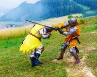 Il combattimento knights sul prato verde in costumi storici fotografie stock libere da diritti
