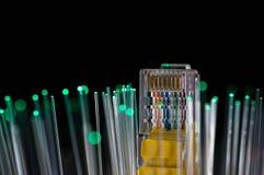 Il commutatore giallo di Internet, fibre ottiche verdi si chiude sul macro colpo Immagine Stock Libera da Diritti