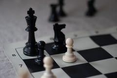 Il compagno di scacchi con il pegno, dà scacco matto! fotografie stock