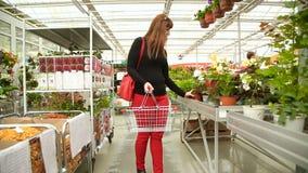 Il compratore con il carrello sceglie i fiori nel negozio di fiore video d archivio