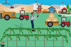 Il concetto astuto dell'azienda agricola, agricoltore controlla la sua azienda agricola con lo smartphone e Fotografia Stock Libera da Diritti