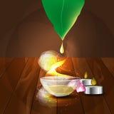 Il concetto dell'aromaterapia e del massaggio Immagine Stock Libera da Diritti