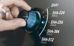 Il concetto della crittografia, crittografico sminuzza l'algoritmo SHA-2 Fotografia Stock