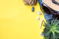 Il concetto delle vacanze estive Conchiglie degli occhiali da sole del cactus del cappello su fondo giallo Fotografia Stock Libera da Diritti