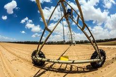 Il concetto di agricoltura Fotografia Stock Libera da Diritti