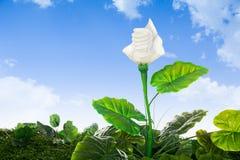 Il concetto di energia, interra la pianta di lampadina amichevole Immagini Stock