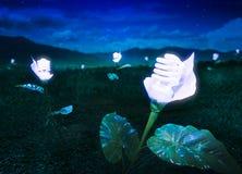 Il concetto di energia, interra la pianta di lampadina amichevole alla notte Fotografia Stock Libera da Diritti