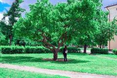 Il concetto di protezione di natura, ecologia, amore della natura una giovane donna sta sotto un grande albero verde e cerca le f immagini stock