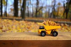 Il concetto di raccolta stagionale delle foglie cadute autunno è descritto sotto forma di camion di giallo del giocattolo caricat Immagini Stock