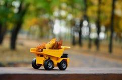 Il concetto di raccolta stagionale delle foglie cadute autunno è descritto sotto forma di camion di giallo del giocattolo caricat Fotografie Stock