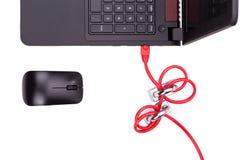 Il concetto di sicurezza della rete di computer con il doppio padlocks sopra la c Fotografie Stock Libere da Diritti
