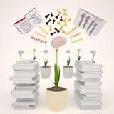 Il concetto di sviluppo della mente Fotografia Stock