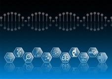 Il concetto e l'icona astratti della tecnologia del fondo alla luce blu, a cervello ed al corpo umano guariscono royalty illustrazione gratis