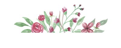 Il confine acquerello Rose Frame Wedding Flower Hand rossa ha dipinto Fotografie Stock Libere da Diritti