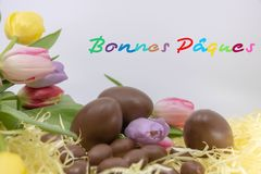 Il confine con testo Pasqua felice, risorsa grafica molto variopinta Bonnes Pâques è Pasqua felice scritta in francese fotografia stock