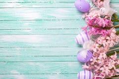 Il confine dalle uova viola decorative e dai giacinti rosa fiorisce Fotografia Stock Libera da Diritti