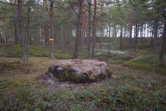 Il confine di area, segno del terreno forestale Immagini Stock Libere da Diritti