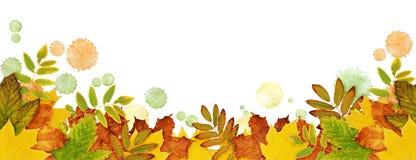 Il confine di autunno con le foglie e la pittura secche macchia nel giallo, orango Fotografia Stock