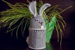 Il coniglietto di pasqua è ricordo tricottato nell'occasione Fotografia Stock Libera da Diritti