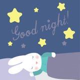 Il coniglietto sveglio sta dormendo sotto le stelle Fotografia Stock