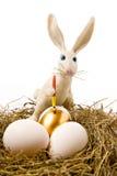 Il coniglio di pasqua vernicia l'uovo Immagini Stock